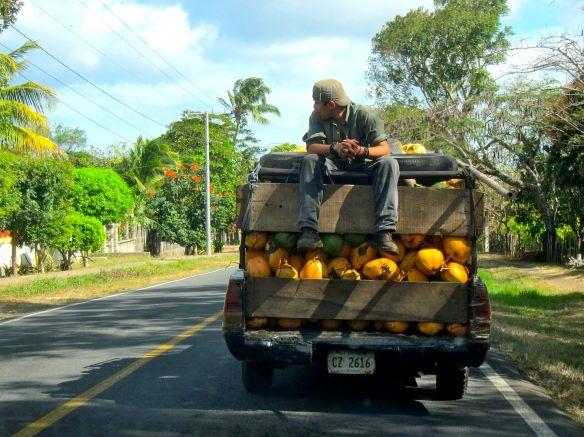 coco truck